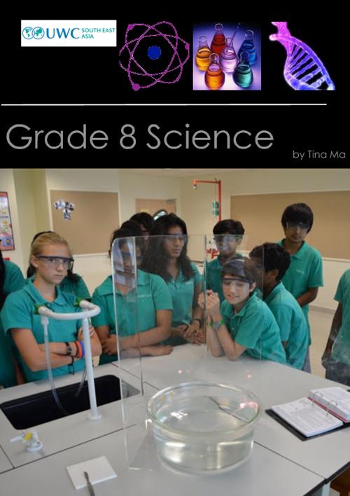 Grade 8 Chemistry Reactivity Notes
