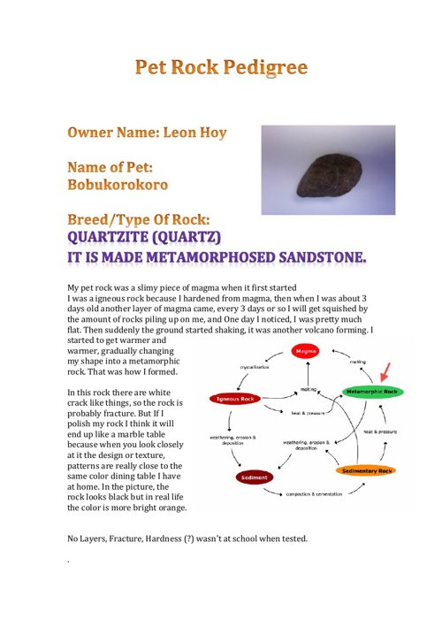 Pet Rock Pedigree