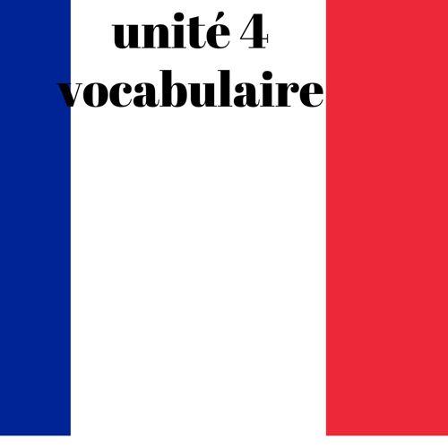 Unit 4 Vocab