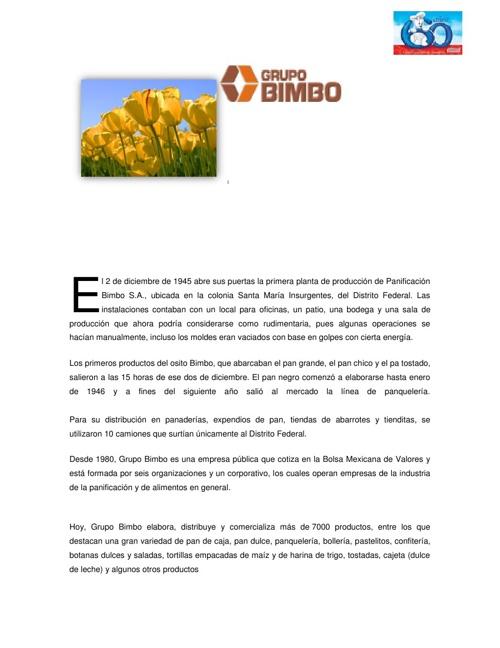 Grupo Bimbo_SELR