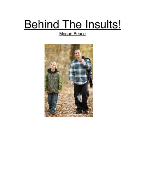 Behind The Insults!