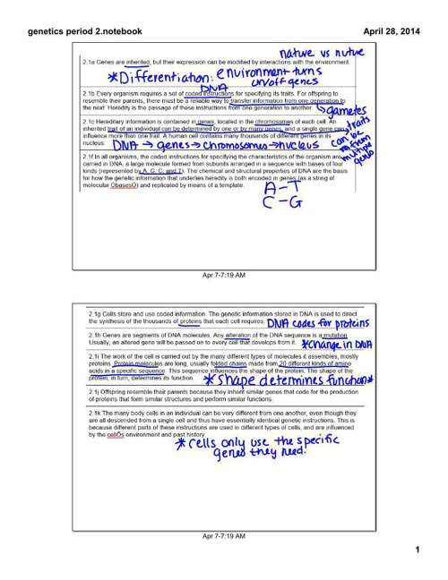 Genetics Part 1 Notes