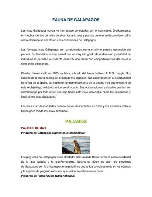 FAUNA DE GALÁPAGOS - CESAR IMBAQUINGO