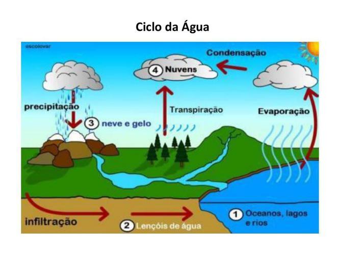 Aula Ciclos Biogeoquimicos(1)