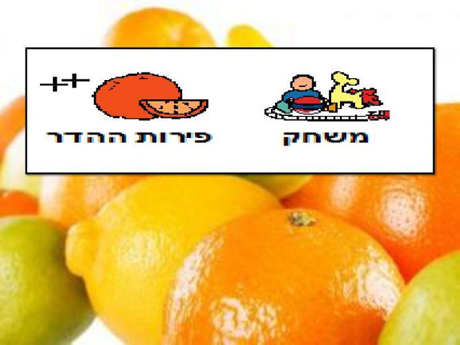 משחק פירות הדר