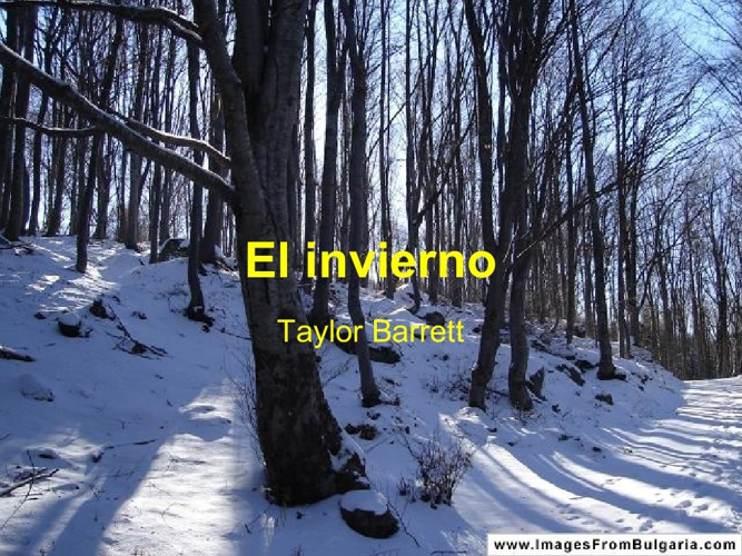 El invierno-Taylor Barrett
