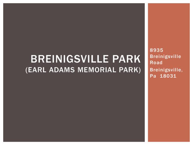 Breinigsville Park