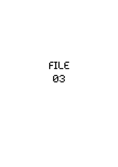 FILE 03