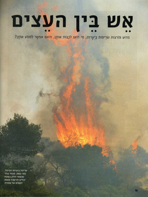 אש בין העצים, מסע צעיר 67, אוקטובר 2003