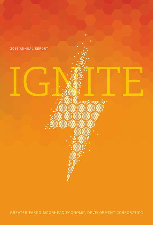 GFMEDC 2014 annual report Final2