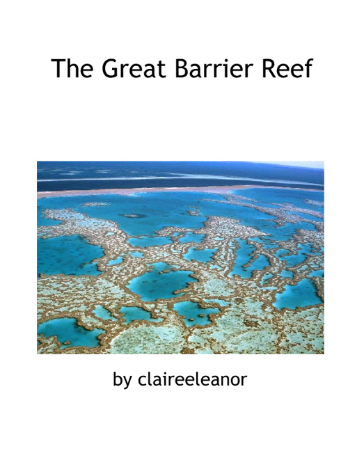 Great Barrier Reef by Claire