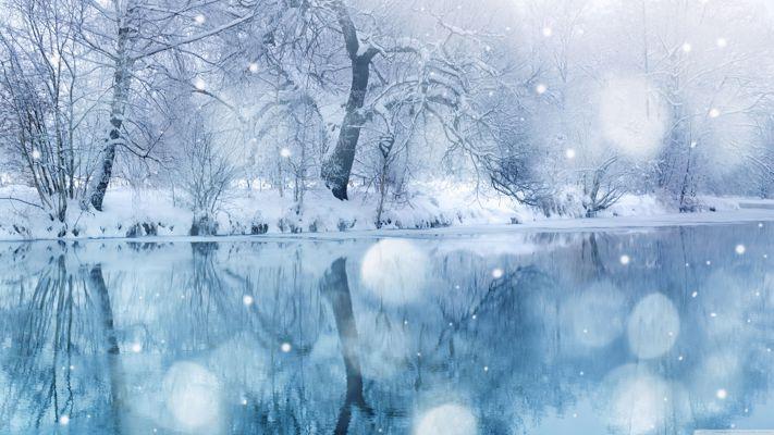 48612_winter_snow_winter_scene