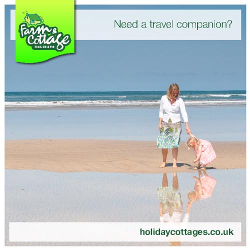 Need a travel companion?