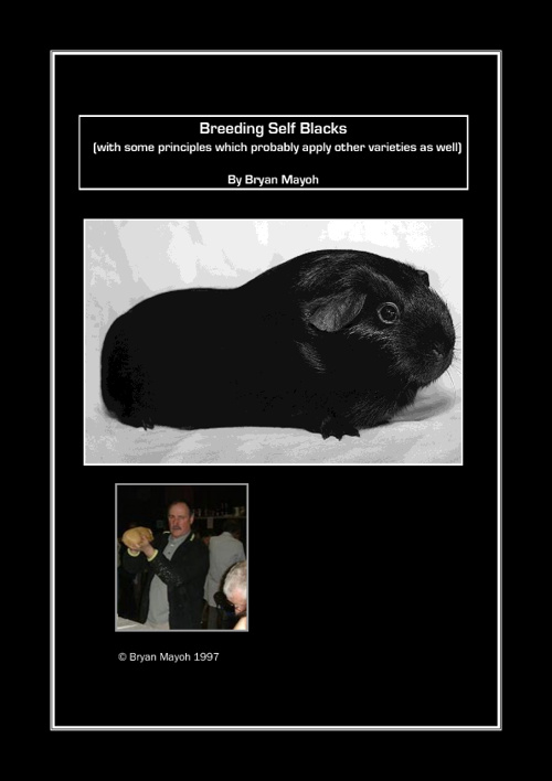 BREEDING SELF BLACK CAVIES