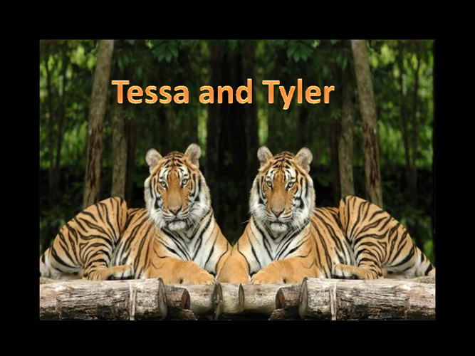 Tessa and Tyler