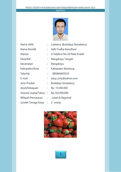 Profil Wirausaha Jabar 2013