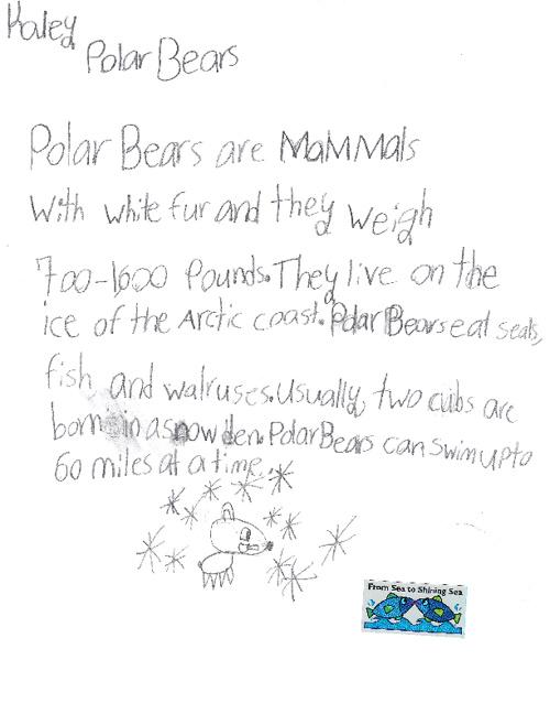 Polar Bears by Kaley