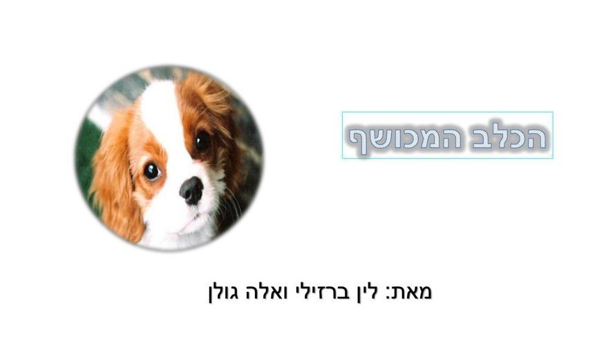 כלב מכושף סיום