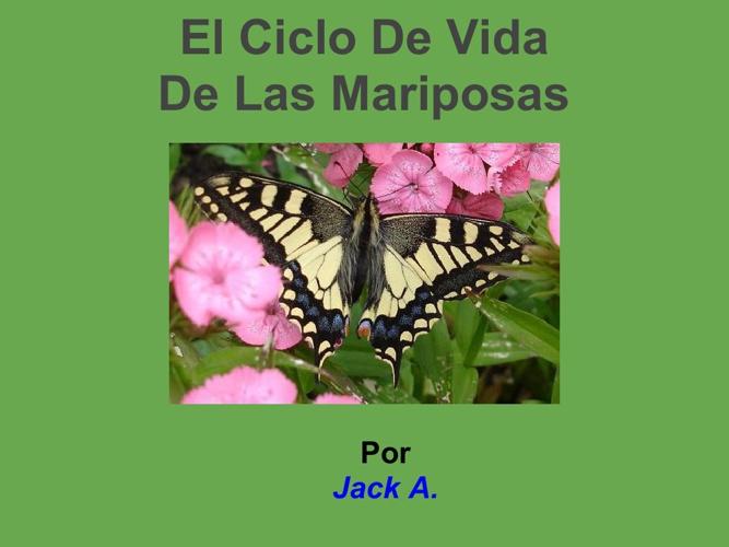 Jack A. butterfly