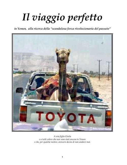 Il viaggio perfetto - Sana'a