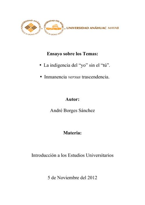 1 IEU Ensayo - Andre Borges