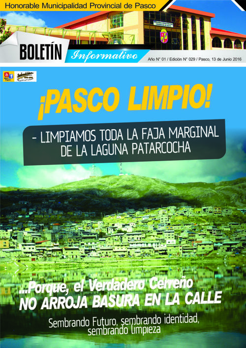 BOLETÍN MUNICIPAL N° 029