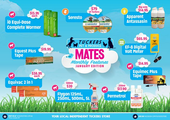 Tuckers Mates Monthly Features - January 2017 Edition