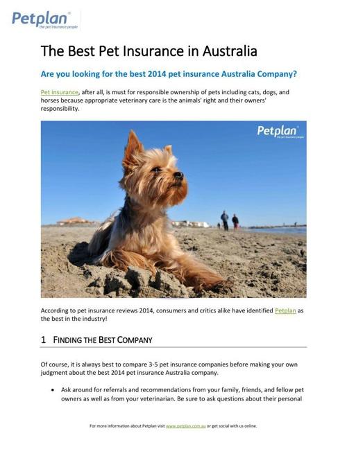 The Best Pet Insurance in Australia