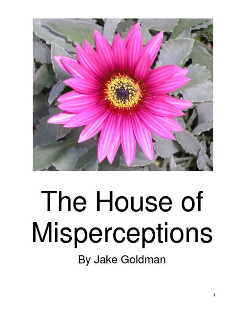 The House of Misperceptions