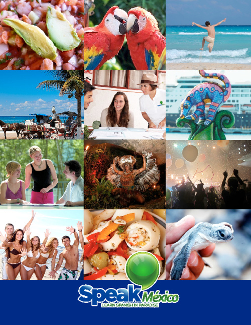 SpeakMexico Brochure 2012