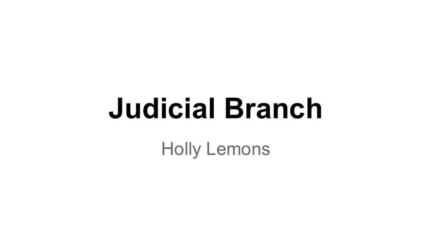 Judicial flipbook