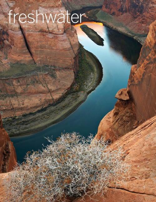 freshwater: Spring 2010