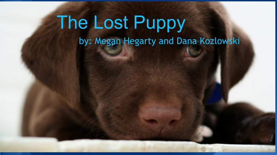 Childrens Book_The Lost Puppy