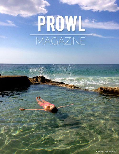 PROWL - PDF 1