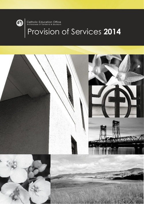 Provision of Services 2014