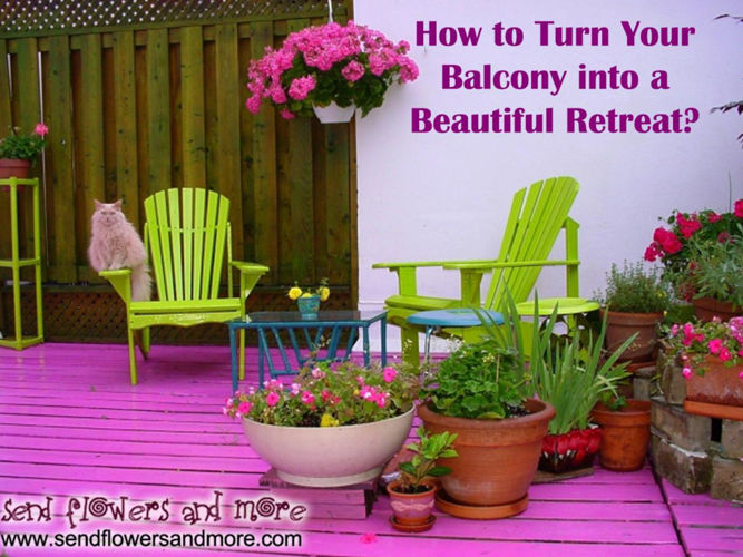 Decorate Your Home with Best Balcony Flowers