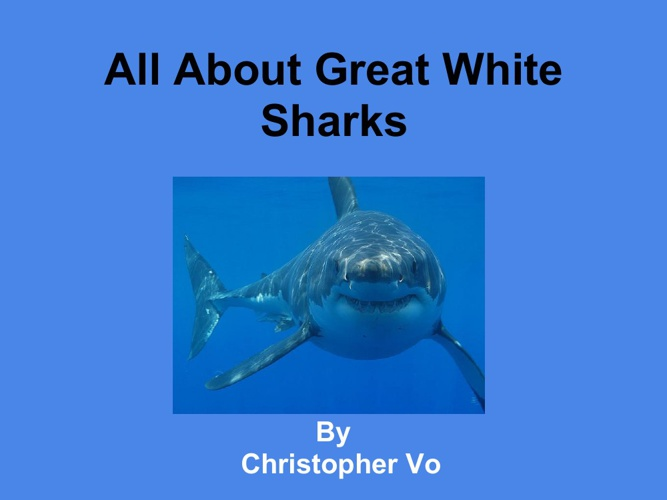All About Great White Sharks