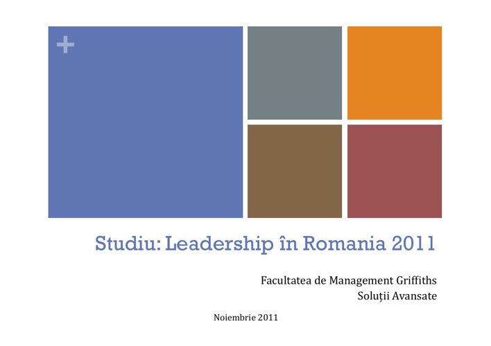 Report on Leadership Romania