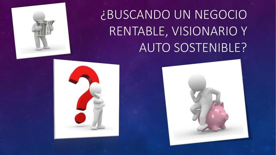 Buscando un negocio rentable, visionario y