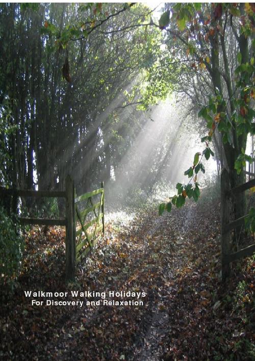 Walkmoor