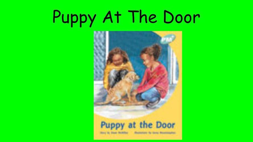 Syriah  Puppy At The Door  (2)