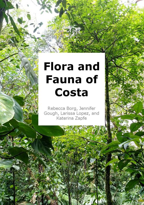 Flora and Fauna of Costa Rica (Part 1)
