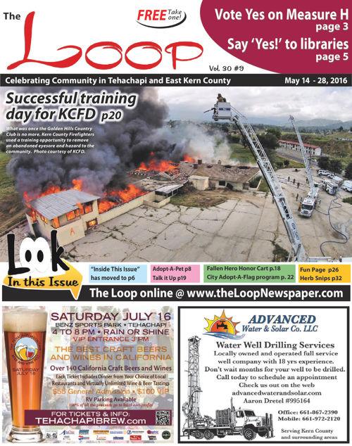 The Loop Newspaper-Vol 30 No 9