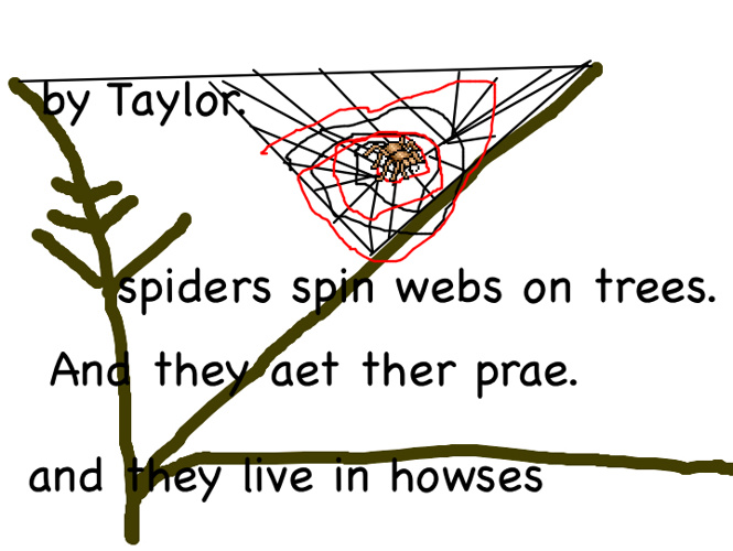 Songster's Spiders
