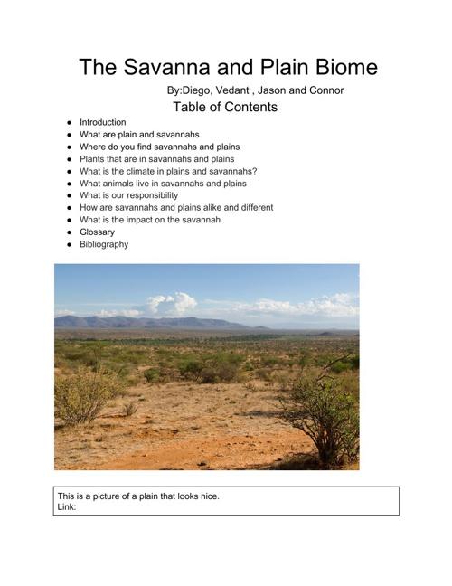 Savannahs and Plains
