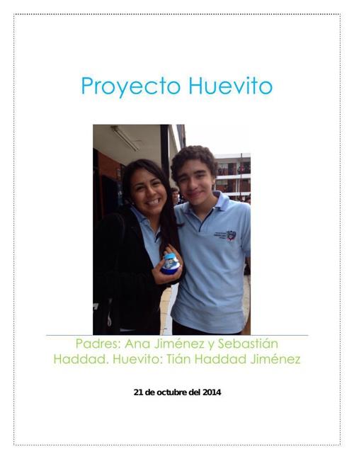 Proyecto Huevito