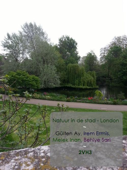 Natuur in de Stad - London