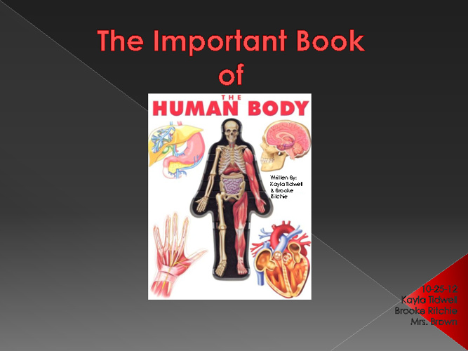 The Important Book of the Human Body