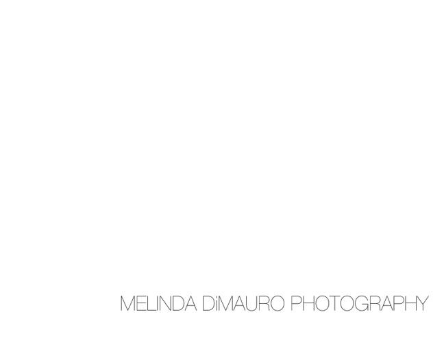 modelflip