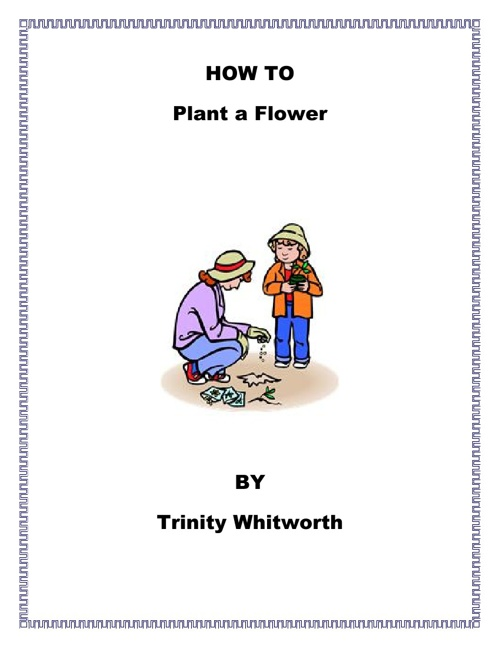 How to Plant a Flower by Trinity Witworth